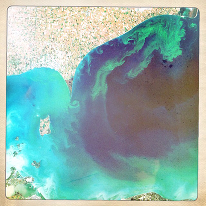 """""""Toxic Algae Bloom in Lake Erie"""" by Jesse Allen and Robert Simmon - NASA Earth Observatory. Licensed under Public Domain via Wikimedia Commons"""